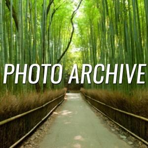 www.nonprofitmartialarts.com/photo-archive