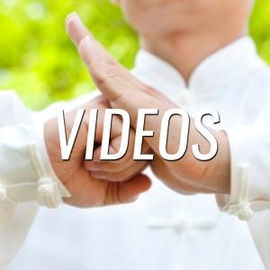 www.nonprofitmartialarts.com/videos